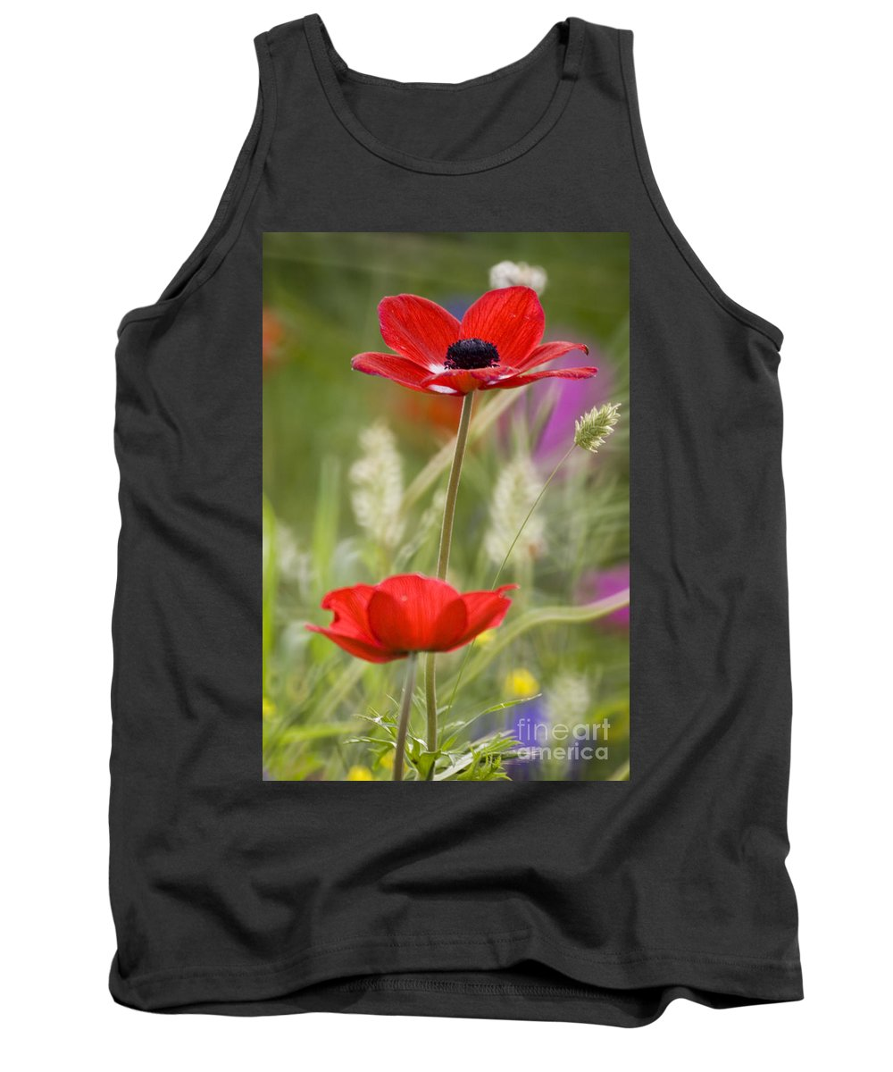 Red Tank Top featuring the photograph Red Anemone Coronaria In Nature by Ofer Zilberstein