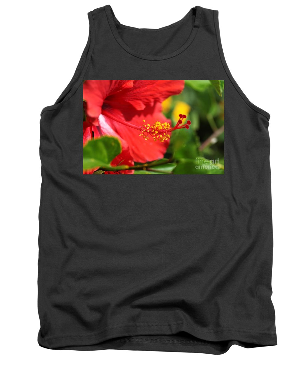 Flowers Tank Top featuring the photograph Red Hibiscus And Green by Nadine Rippelmeyer