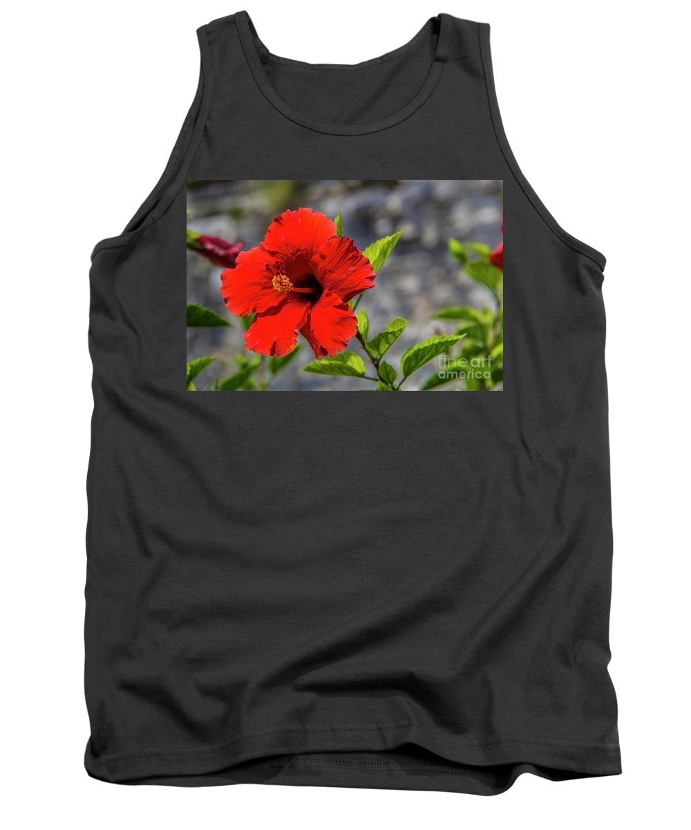Hibiscus Tank Top featuring the photograph Red Hibiscus by Roberta Bragan