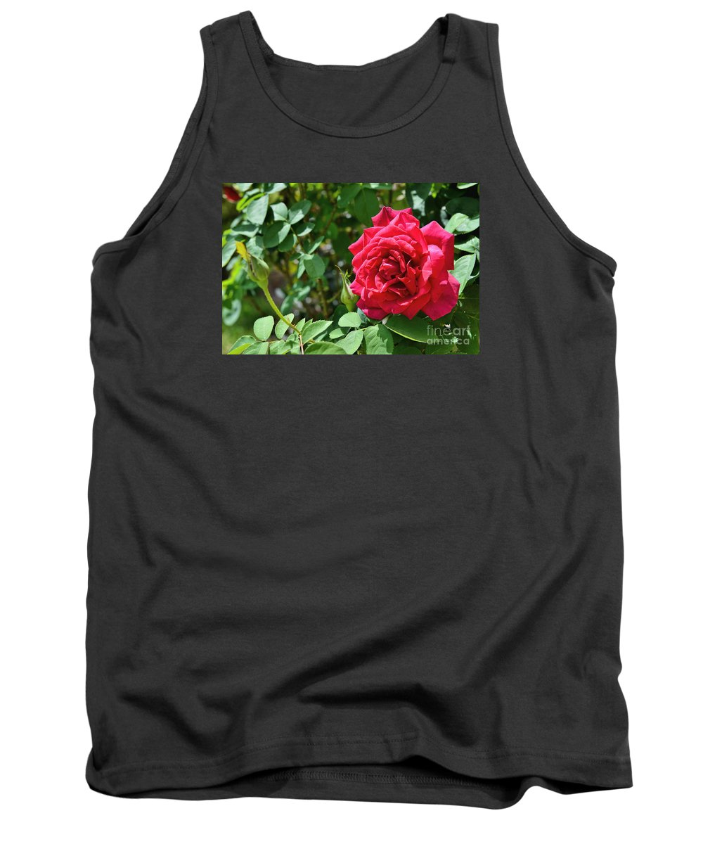 Red Rose Art Tank Top featuring the photograph Red Rose Blooming by Olga Hamilton