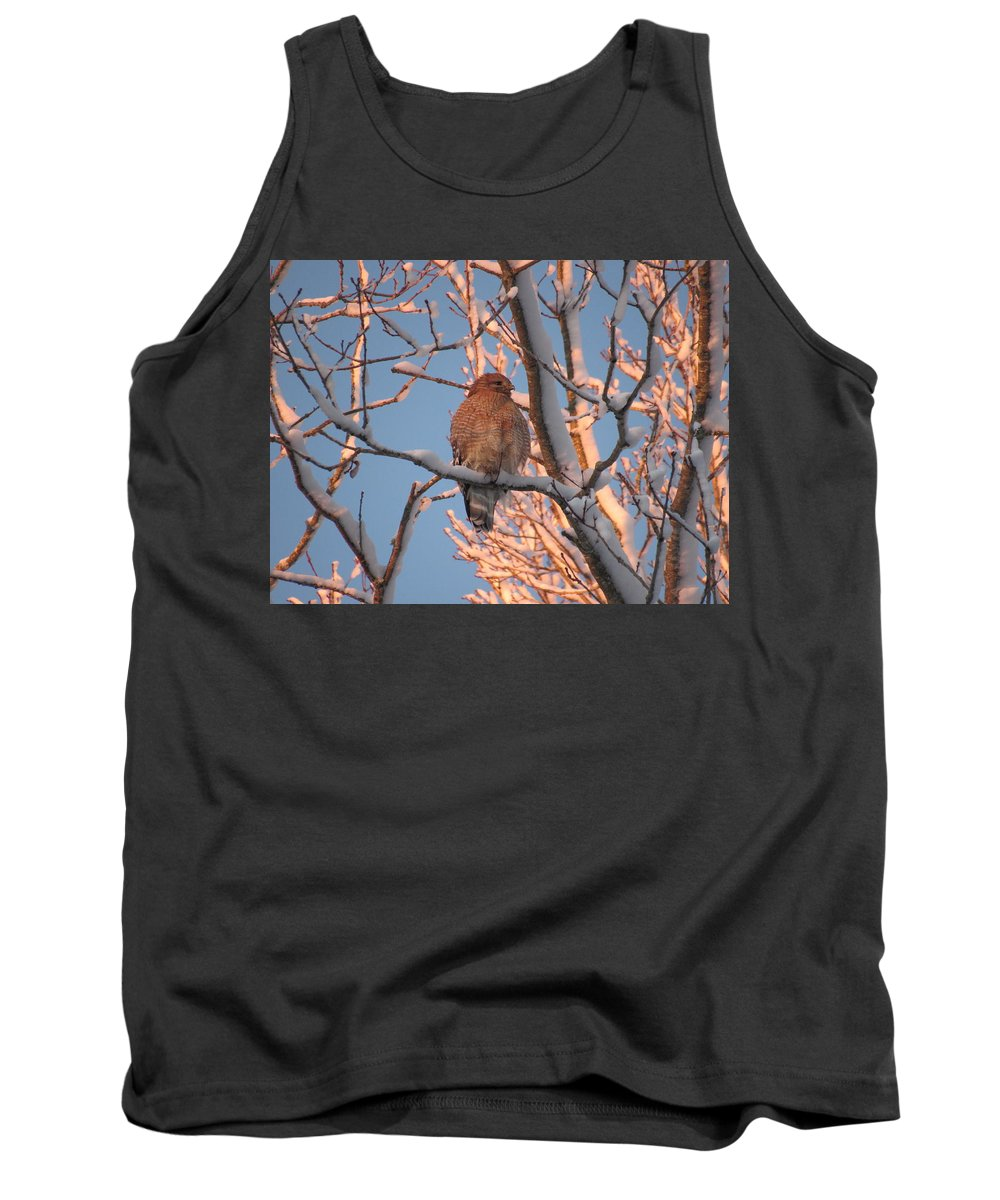 Hawk Tank Top featuring the photograph Red-shouldered Hawk by Kristen Anderson