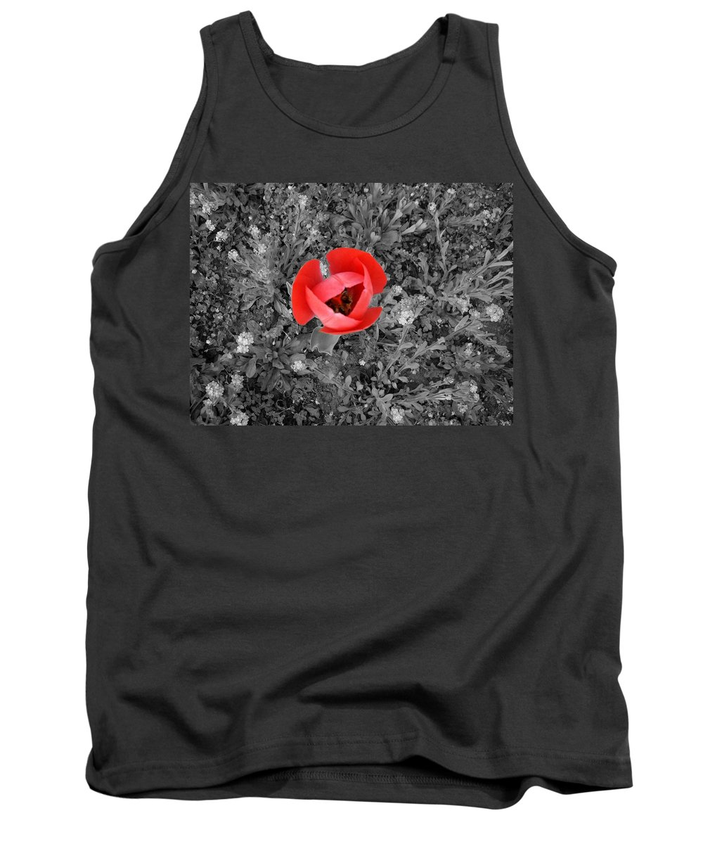 Red Tulip Photography Tank Top featuring the photograph Red Tulip From Above by Georgeta Blanaru