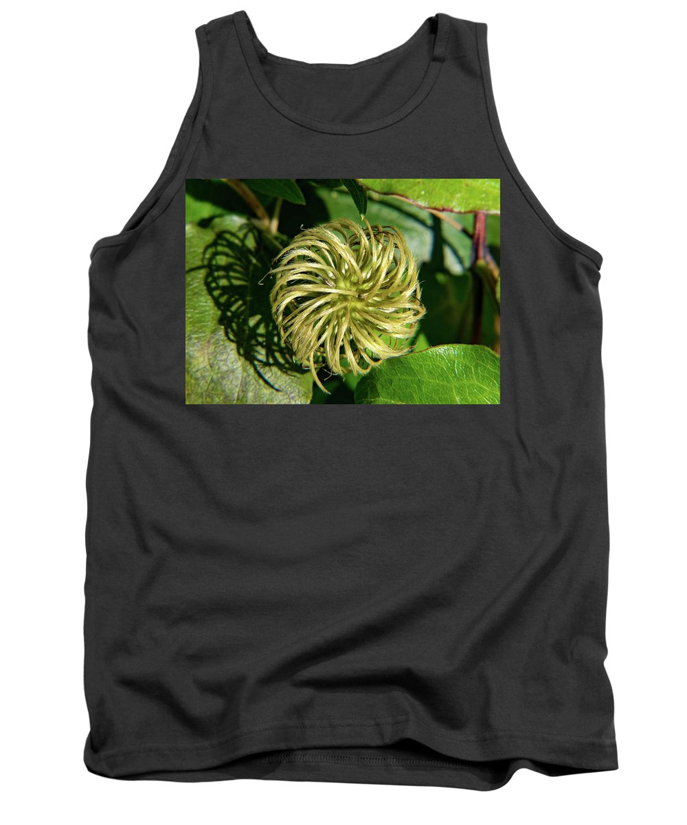 Remainder Tank Top featuring the photograph Remainder Of A Clematis Blossom by Douglas Barnett