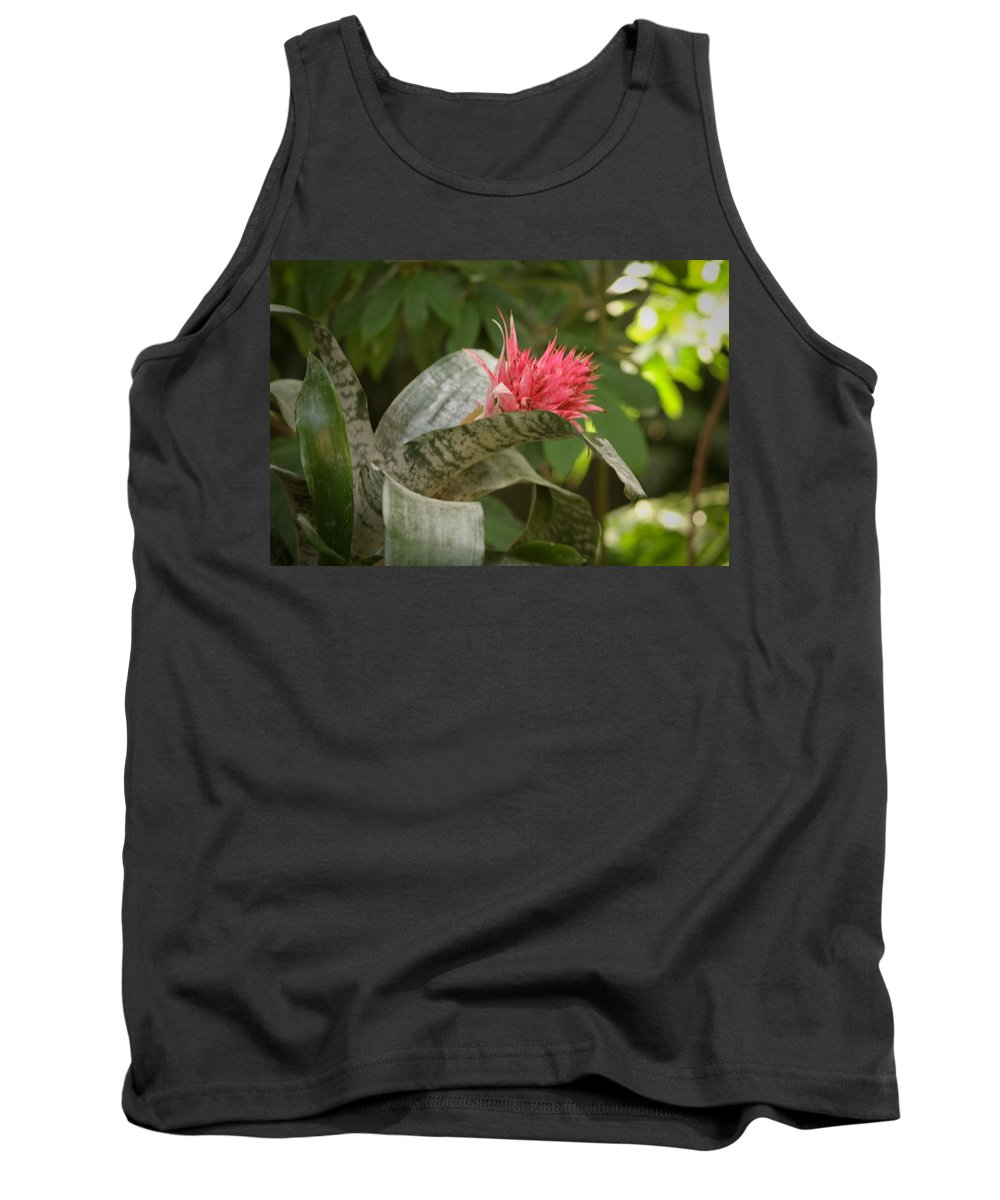 Mount Rushmore Tank Top featuring the photograph Reptile Garden II by Mike Oistad
