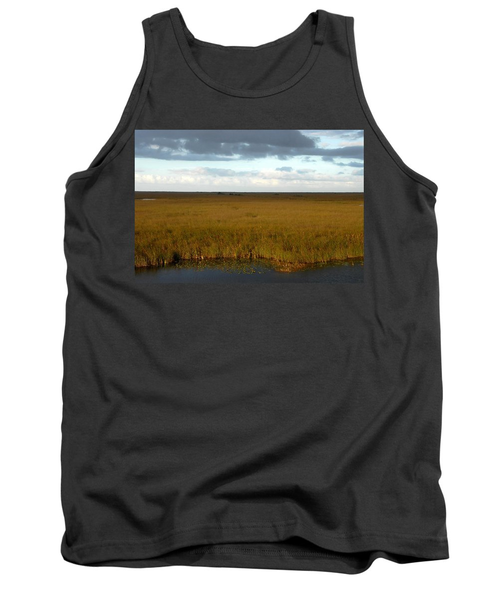 River Of Grass Tank Top featuring the painting River Of Grass by David Lee Thompson