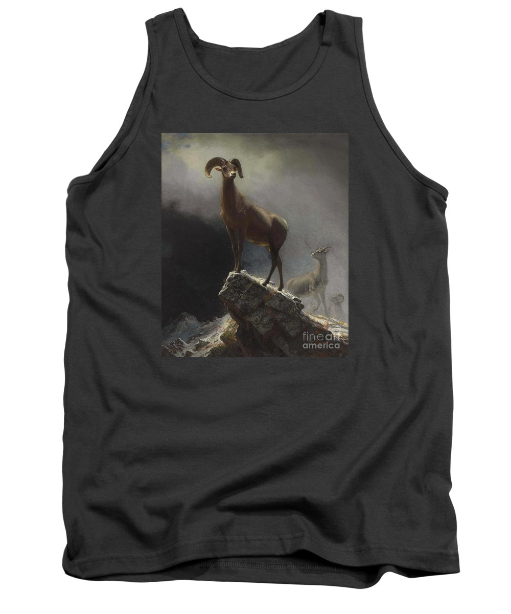 Albert_bierstadt_-_rocky_mountain_sheep_or_big_horn Tank Top featuring the painting Rocky_mountain_sheep_or_big_horn,_ovis,_montana by Celestial Images