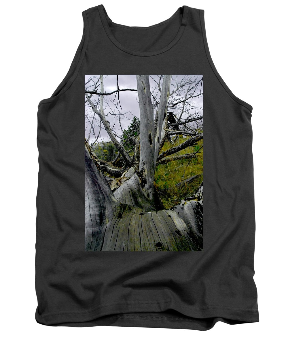 Log Tank Top featuring the photograph Rolling Log 2 by Sara Stevenson