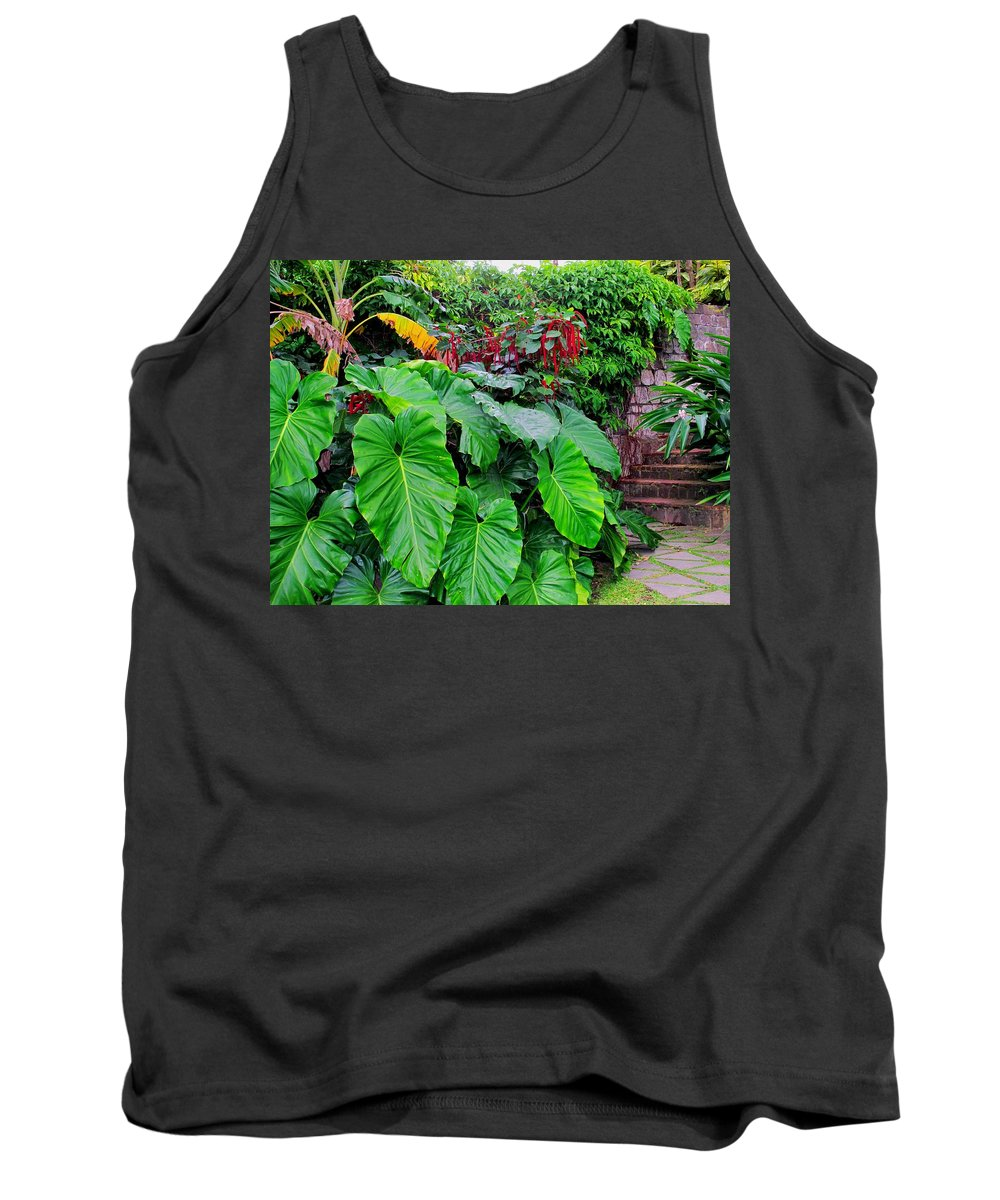 Lush Tank Top featuring the photograph Romney Steps by Ian MacDonald