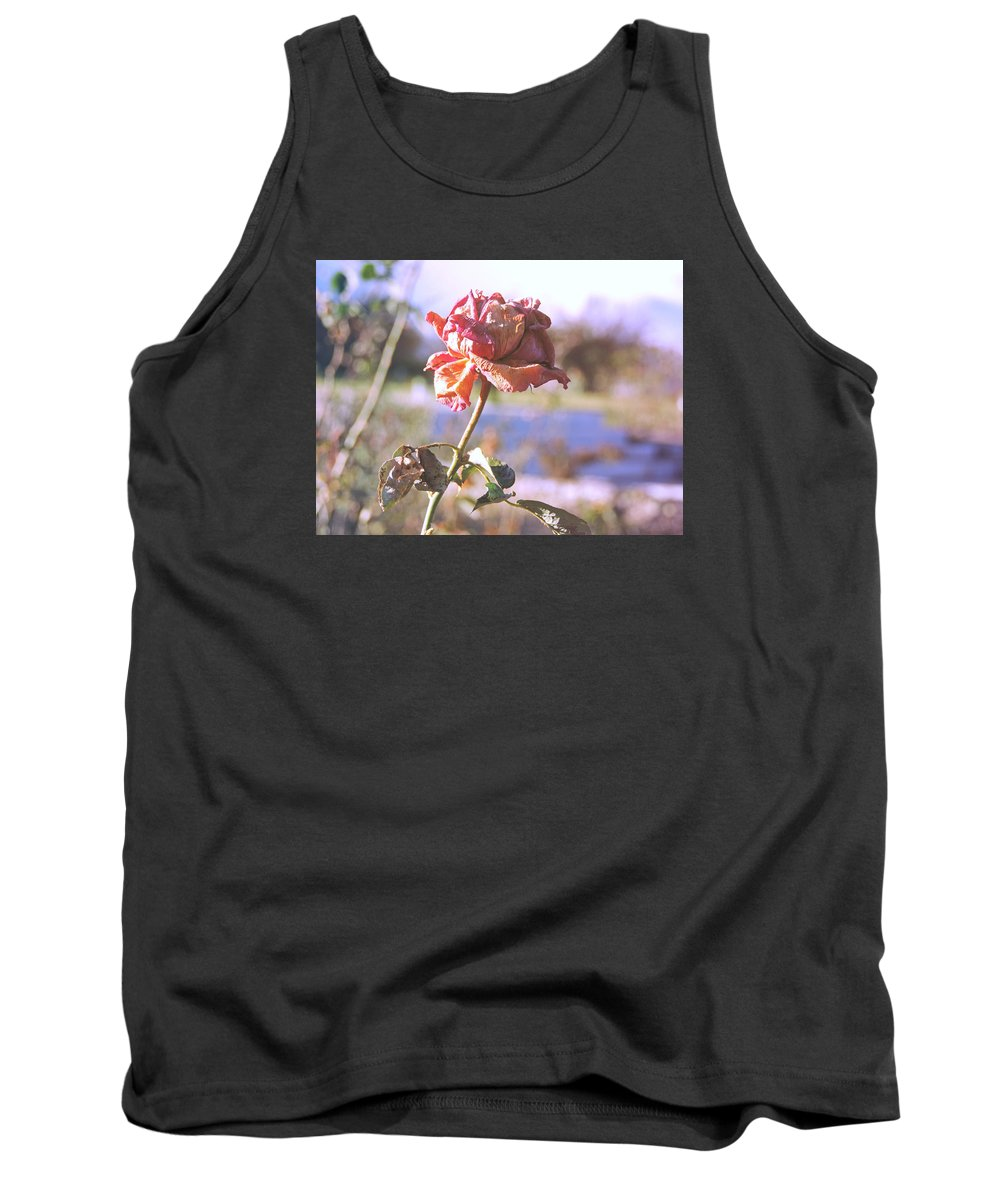 Rose Tank Top featuring the photograph Rose. by Vivian Yeong