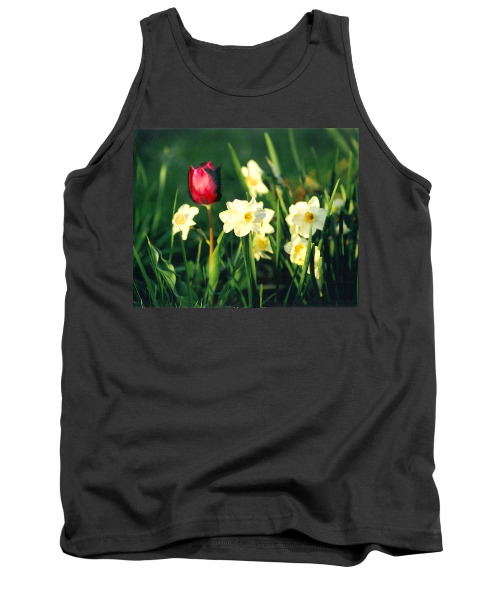 Tulips Tank Top featuring the photograph Royal Spring by Steve Karol