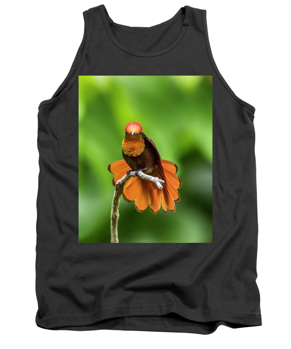 Rachelleeyoung Tank Top featuring the photograph Ruby's Glory by Rachel Lee Young