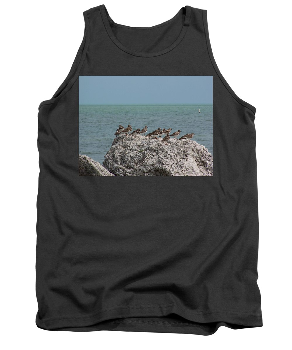 Ruddy Turnstones Tank Top featuring the photograph Ruddy Turnstones On A Rock by Holly Eads