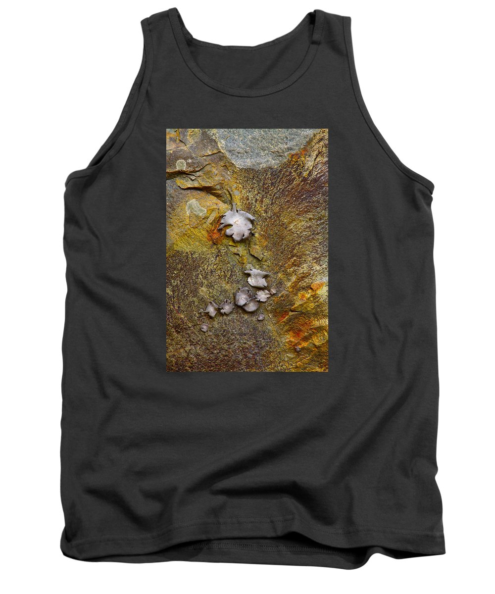 Nature Tank Top featuring the photograph Rusty Red Peridotite With Lichen by Karon Melillo DeVega