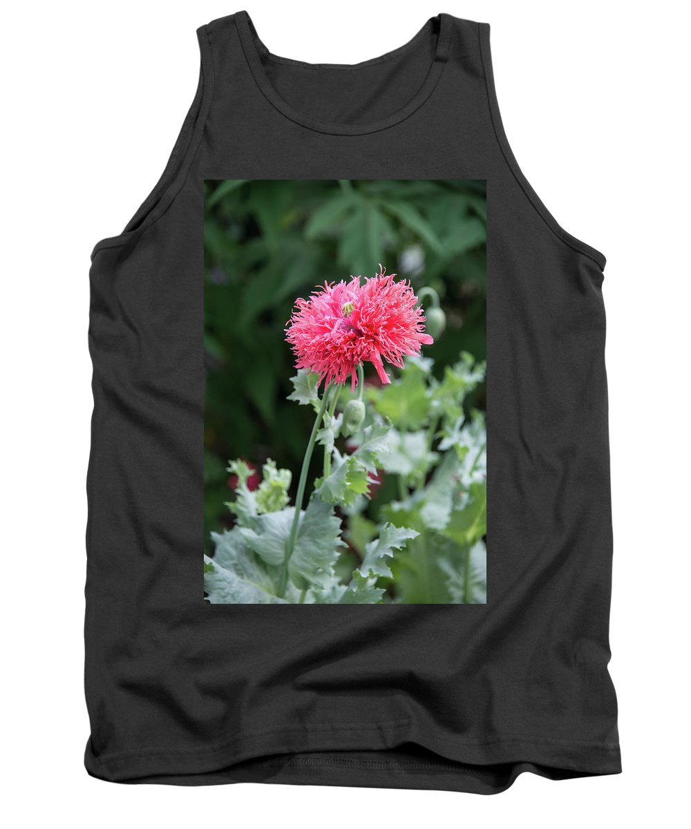 Salmon Tank Top featuring the photograph Salmon Poppy by Michael Bessler
