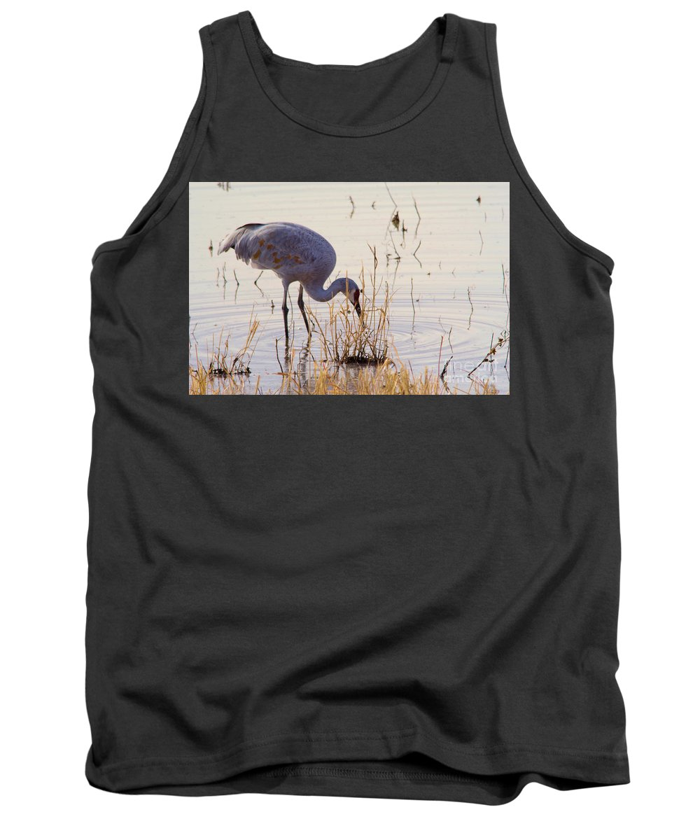 Bird Tank Top featuring the photograph Sand Hill On The Shores by Jeff Swan