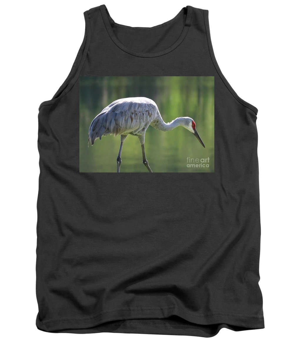 Bird Tank Top featuring the photograph Sandhill And Green Pond by Carol Groenen