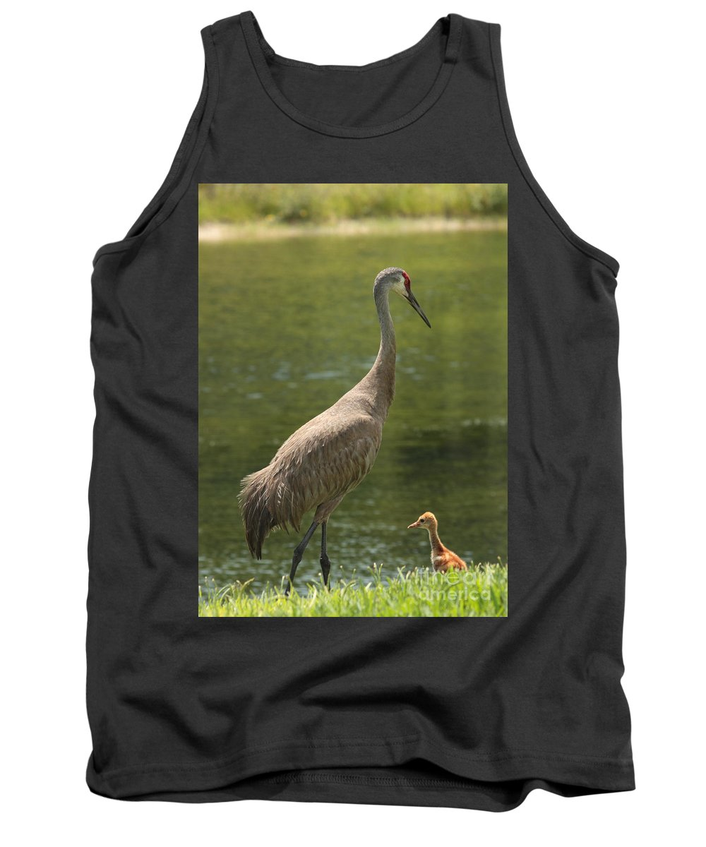 Ponds Tank Top featuring the photograph Sandhill Crane With Baby Chick by Carol Groenen