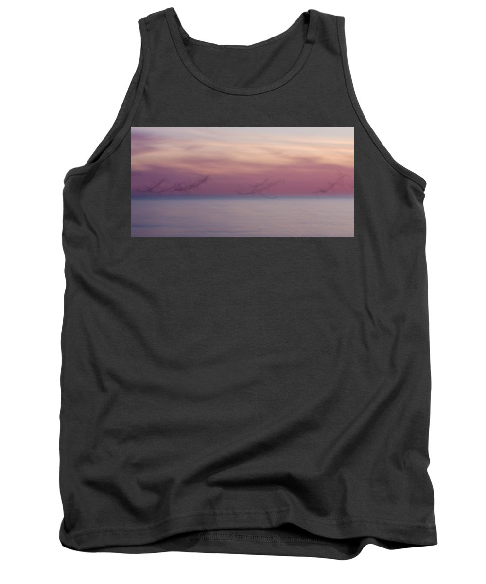 3scape Tank Top featuring the photograph Seagulls In Motion by Adam Romanowicz