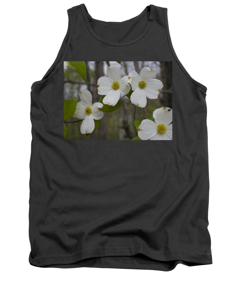 Flower Tank Top featuring the photograph Season Of Dogwood by Andrei Shliakhau