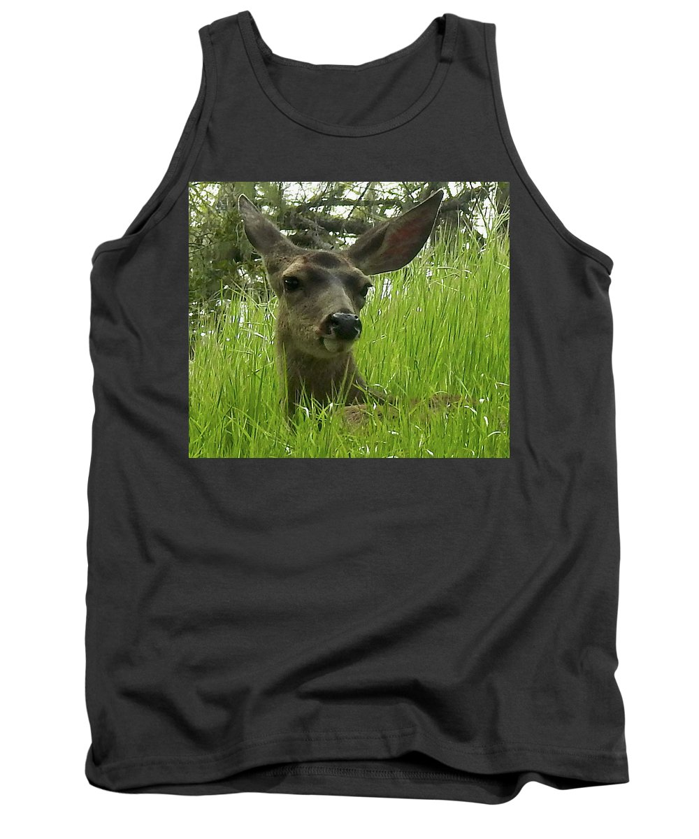 Mule Deer Tank Top featuring the pyrography See Me Now by Sandra O'Toole