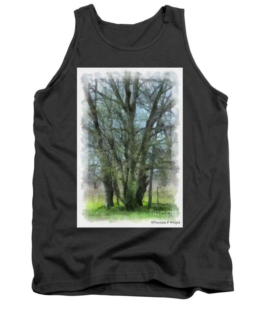 Trees Tank Top featuring the photograph Serenity by Paulette B Wright