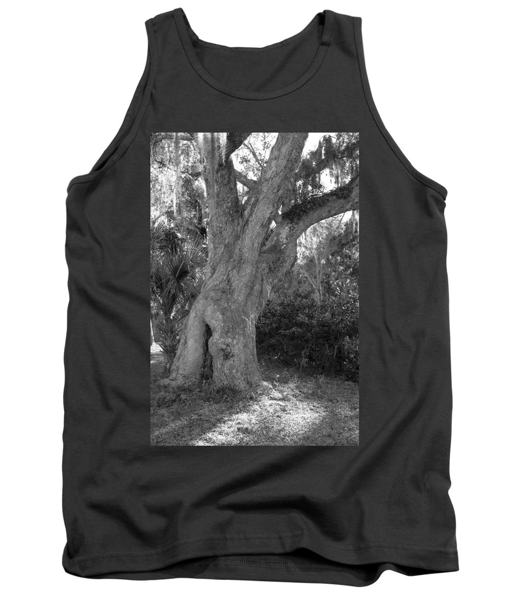 Tree Tank Top featuring the photograph Kingsley Plantation Tree by Spencer Studios