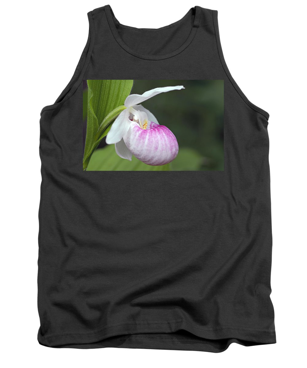 Showy Ladyslipper Tank Top featuring the photograph Showy Ladyslipper by Larry Ricker