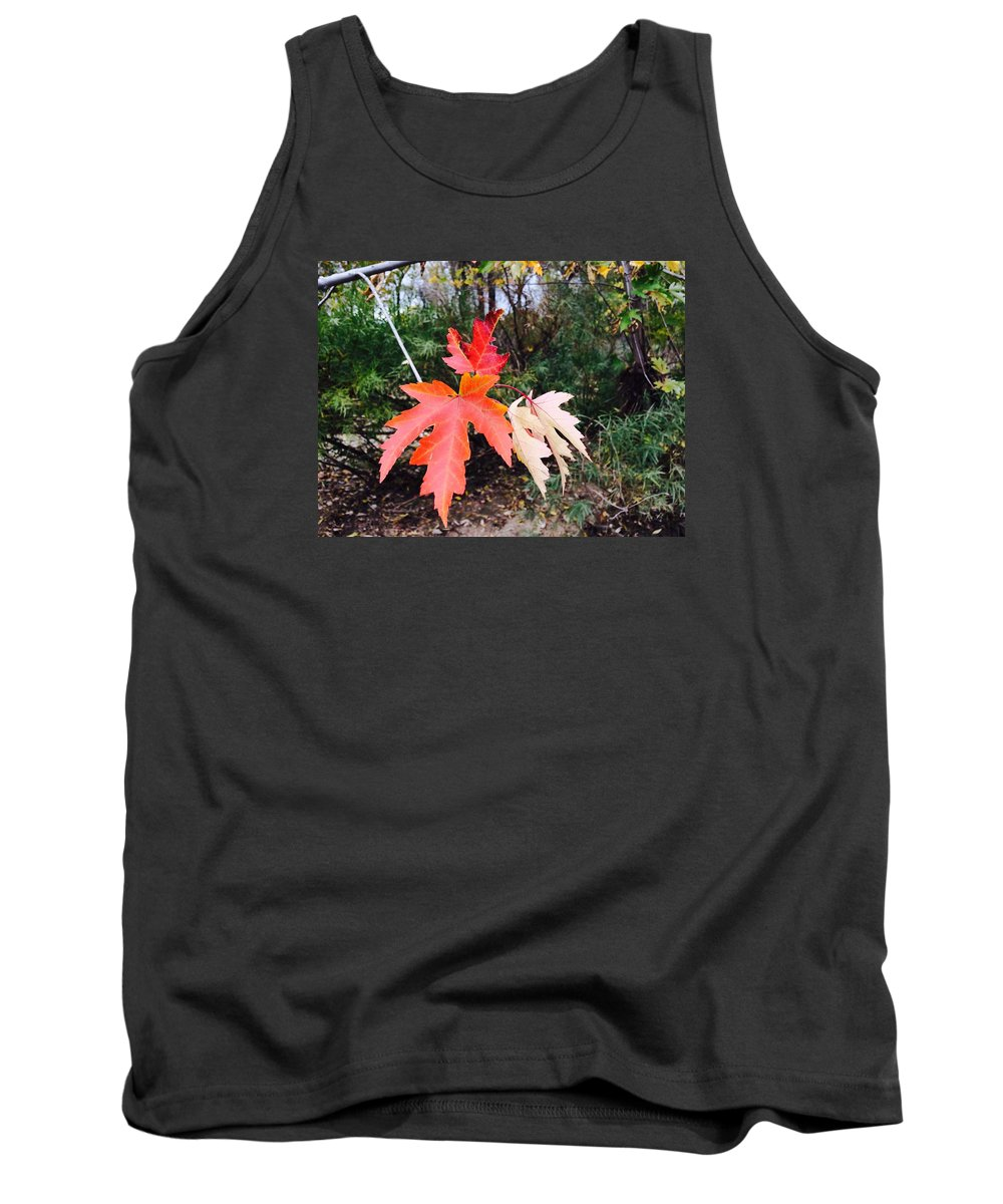 Leaves Tank Top featuring the photograph Silver Maple In Red by Patti Koss