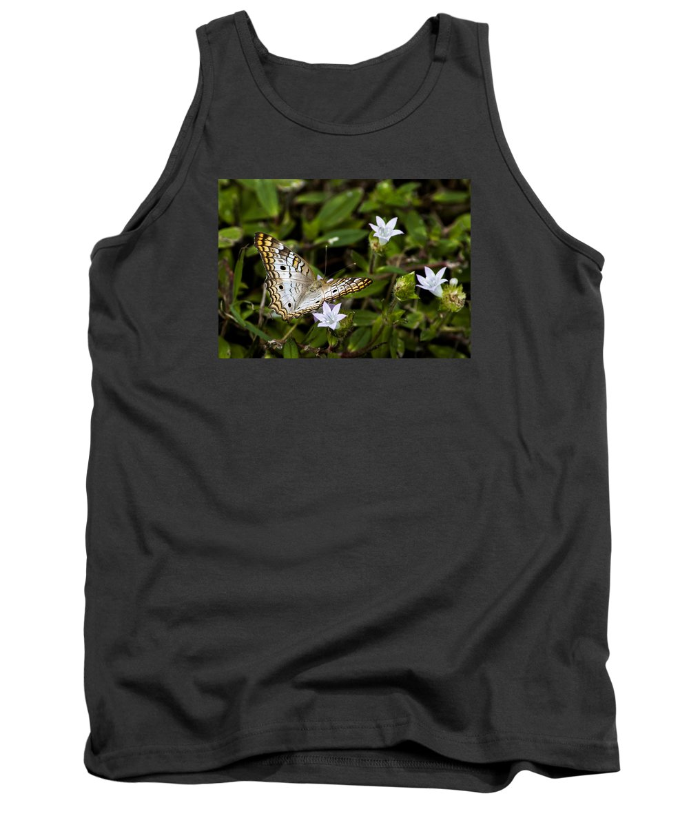 White Peacock Tank Top featuring the photograph Simmons Park Peacock by Norman Johnson