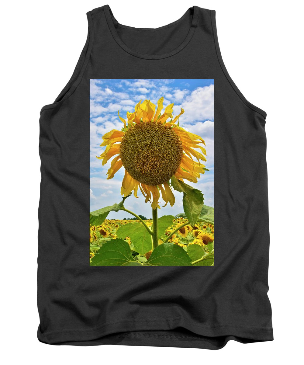 Sister Golden Hair Tank Top featuring the photograph Sister Golden Hair by Skip Hunt