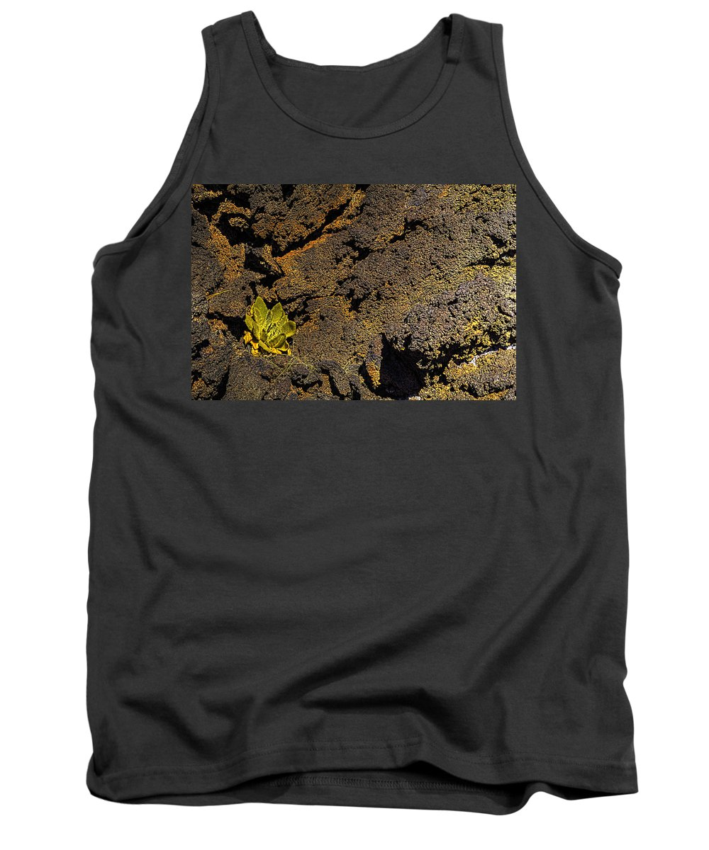 Pictorial Tank Top featuring the photograph Small Aloe In Lava Flow by Roger Passman