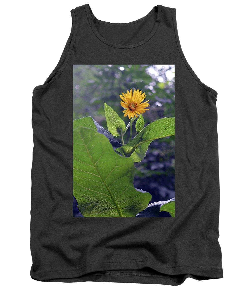 Flower Tank Top featuring the photograph Small Yellow Flower And Green Big Leaves In The Sun Light. by Oana Unciuleanu