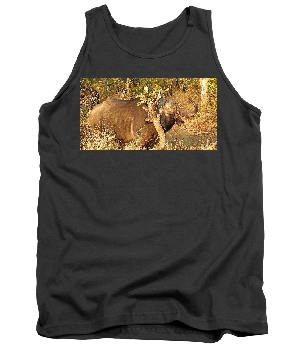 Buffalo Tank Top featuring the photograph Smells Nice by Lisa Byrne