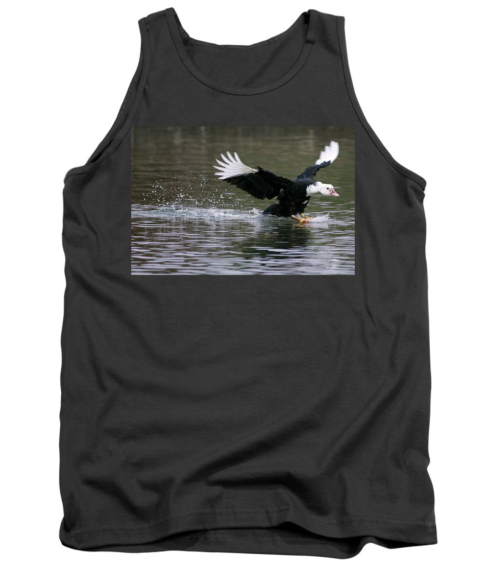 Duck Tank Top featuring the photograph Smooth Landing by Randall Ingalls
