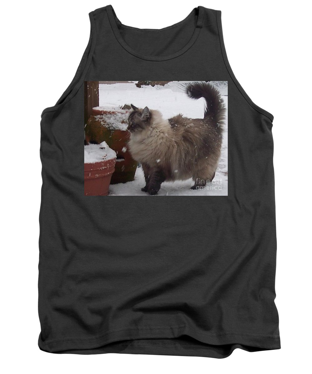 Cats Tank Top featuring the photograph Snow Kitty by Debbi Granruth