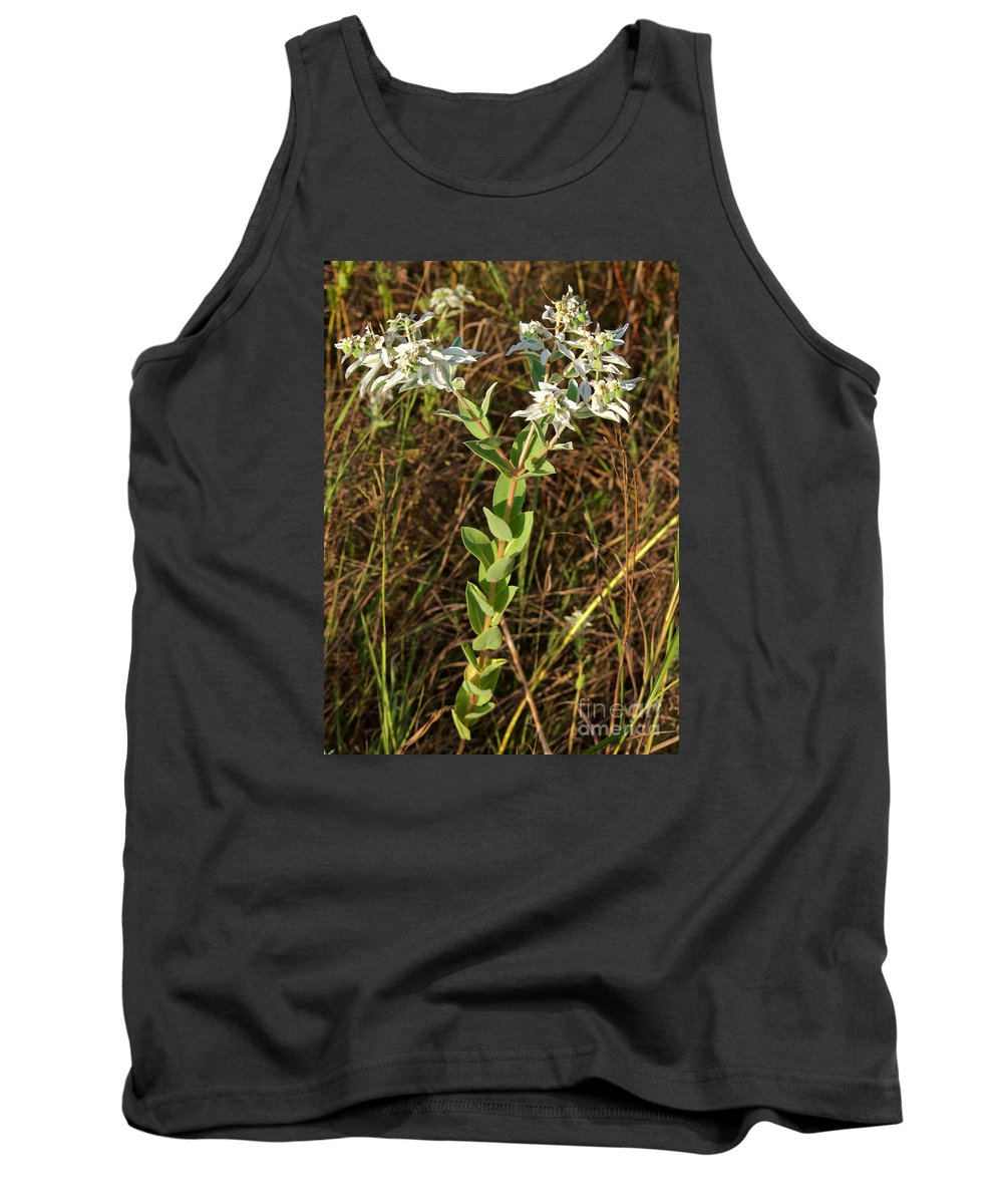 Snow-on-the-mountain Tank Top featuring the photograph Snow-on-the-mountain by Gary Richards