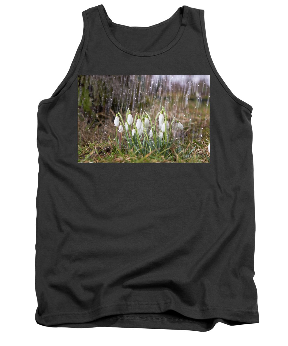 Snowdrop Tank Top featuring the photograph Snowdrops In The Garden Of Spring Rain 3 by Valdis Veinbergs
