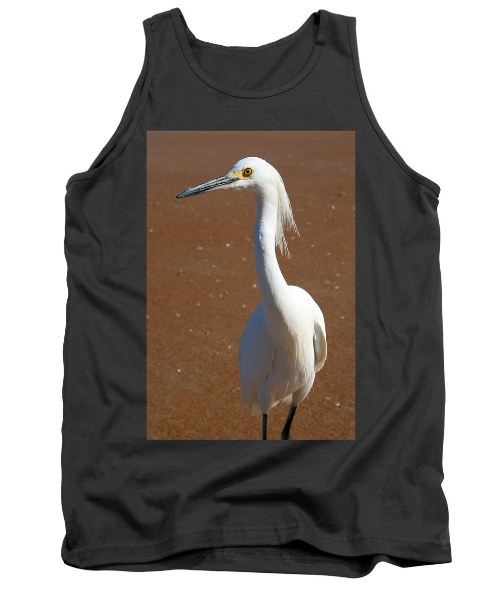 Bird Beach Sand White Bright Yellow Curious Egret Long Neck Feather Eye Ocean Tank Top featuring the photograph Snowy Egret by Andrei Shliakhau
