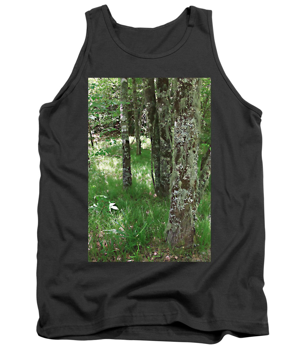 Trees Forrest Green Photograph Photography Digital Summer Tank Top featuring the photograph Soft Trees by Shari Jardina