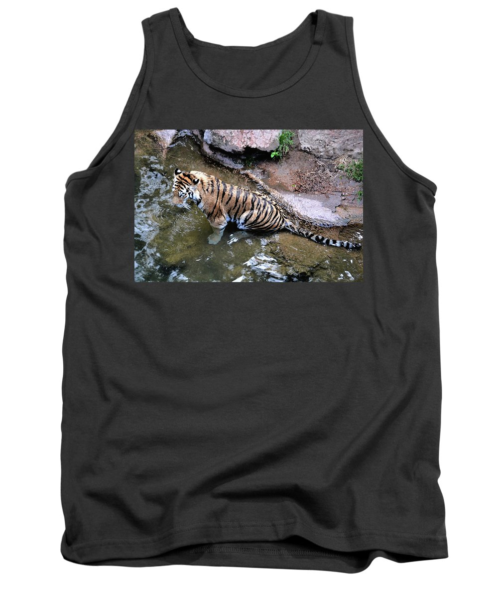 Tiger Tank Top featuring the photograph Some Cats Like Water by Angelina Vick