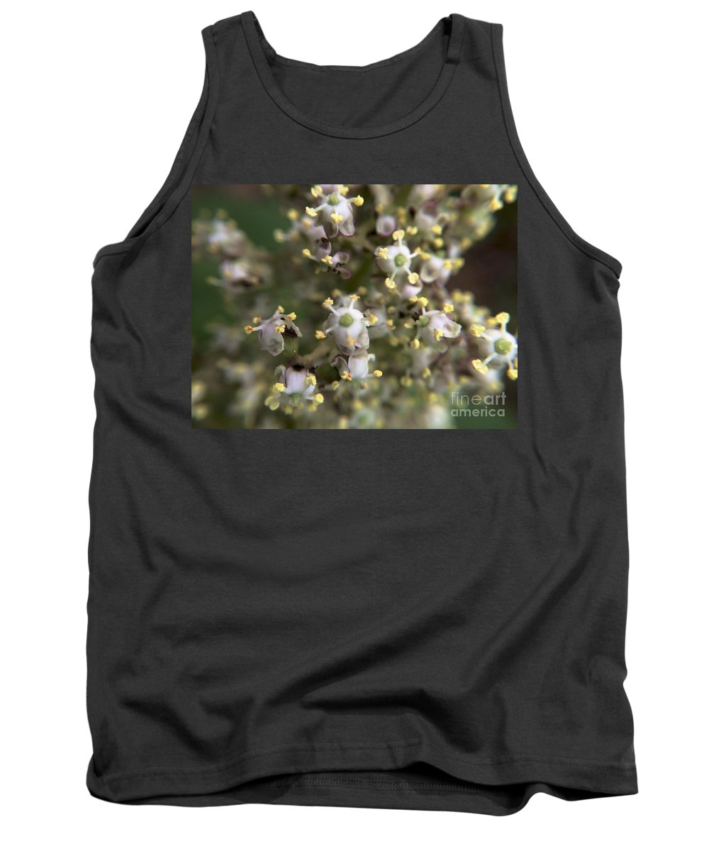 Michigan State University Tank Top featuring the photograph Space Cows by Joseph Yarbrough