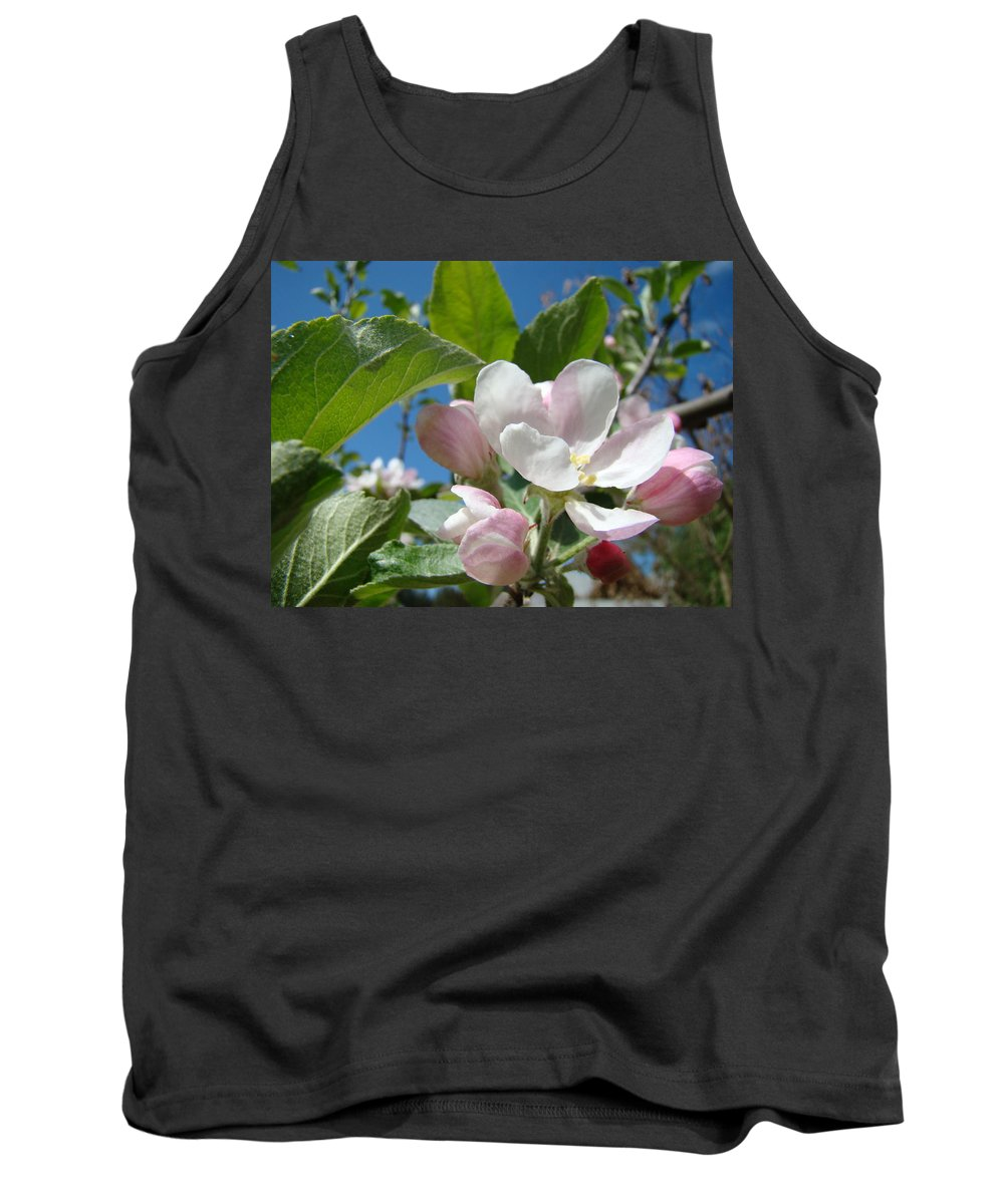 Apple Tank Top featuring the photograph Spring Apple Blossoms Pink White Apple Trees Baslee Troutman by Baslee Troutman
