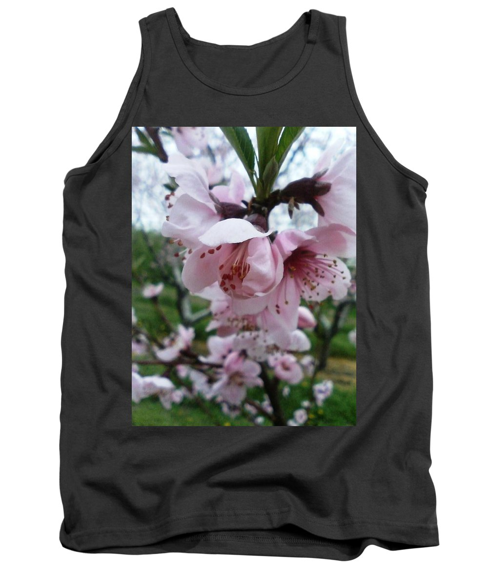 Pink Tank Top featuring the photograph Spring Blossoms by Shelley Blair