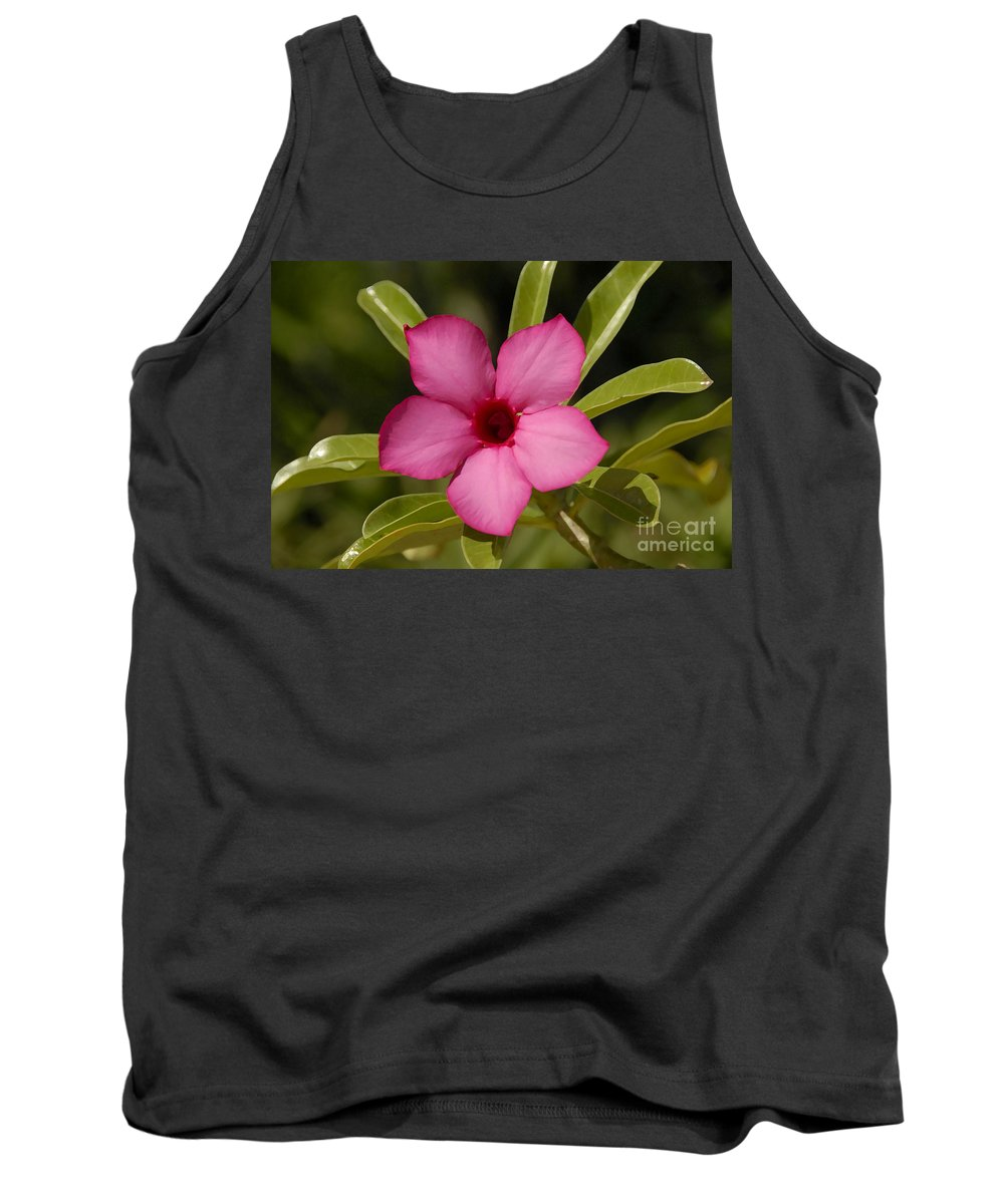 Spring Tank Top featuring the photograph Spring by David Lee Thompson
