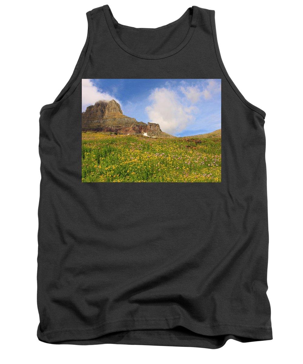 Glacier Tank Top featuring the photograph Spring Mountain by Shari Jardina