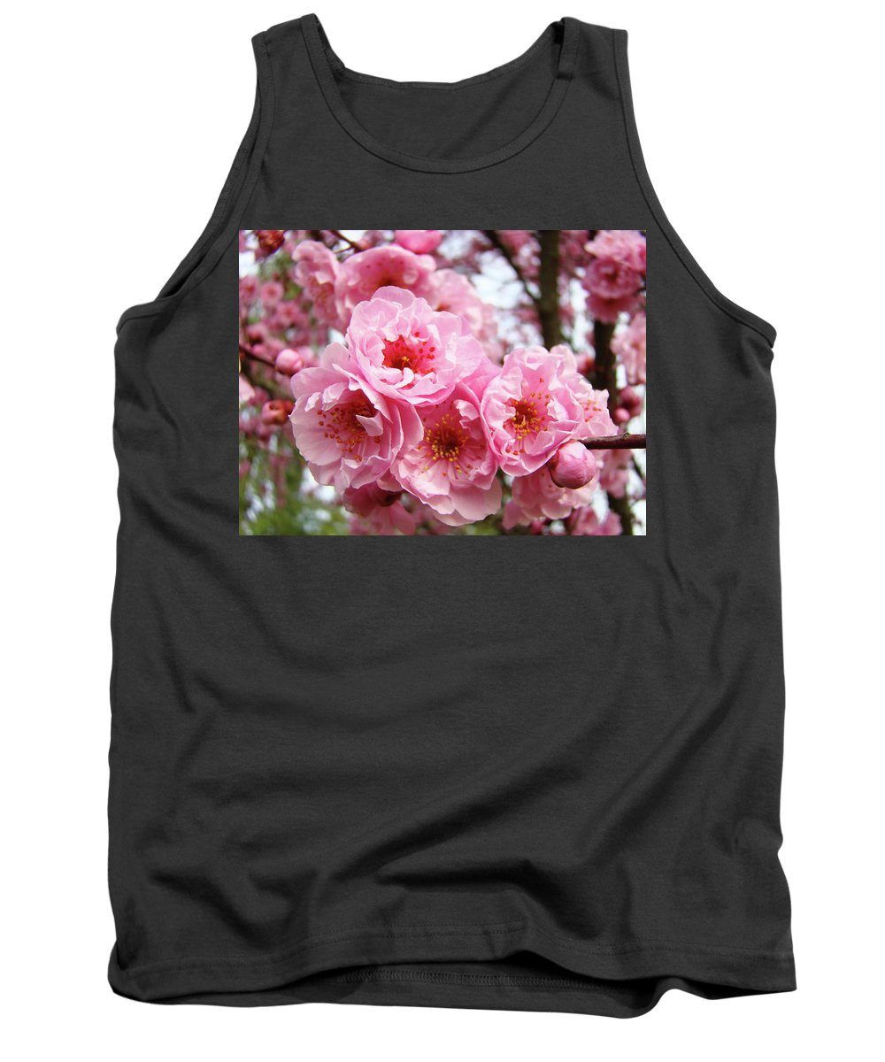 Blossom Tank Top featuring the photograph Spring Pink Tree Blossoms Art Prints Baslee Troutman by Baslee Troutman