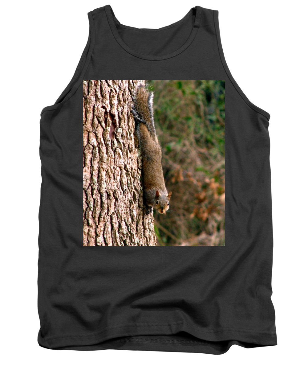 Squirrel Tank Top featuring the photograph Squirrel 6 by J M Farris Photography