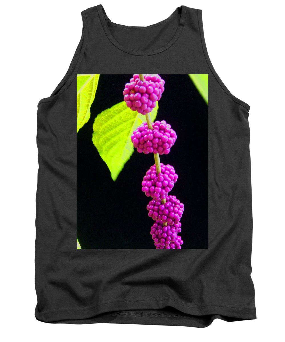 Flower Tank Top featuring the photograph Stalk Of Seeds by Laurie Paci
