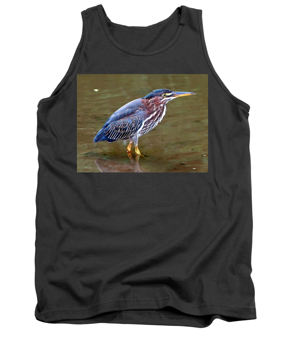 Bird Tank Top featuring the photograph Stalker by Gary Adkins