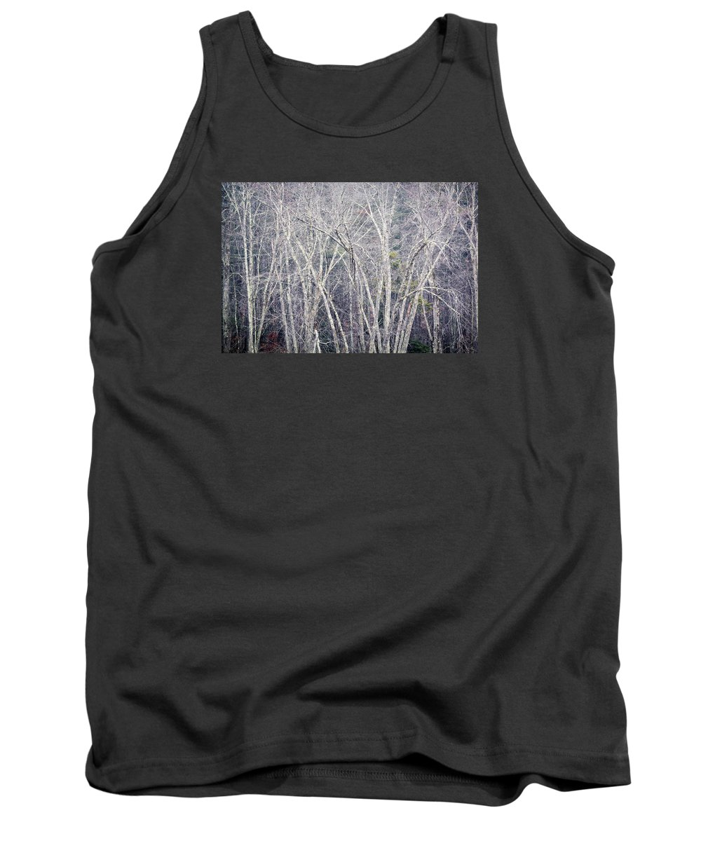 Stark Trees Tank Top featuring the photograph Stark Winter by Diane Moore